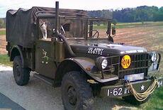Dodge M 37 B1 Oldtimer