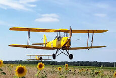 De Havilland DH.82A Tiger Moth Oldtimer