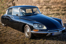 Citroen DS 19 Oldtimer