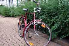 Expressrad Herrensportrad