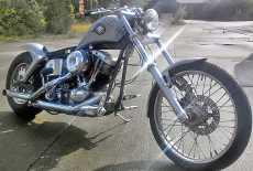 Harley Davidson FXE Custom